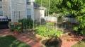 5_week_progress_on_2014_garden.jpg