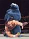 Cookie_Monster_-_WWF.jpg