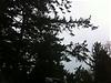 overcast3.jpg