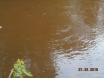 shallow_water.JPG