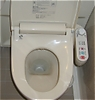 toilet_bowl.jpg